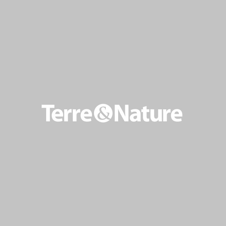 Terre & Nature